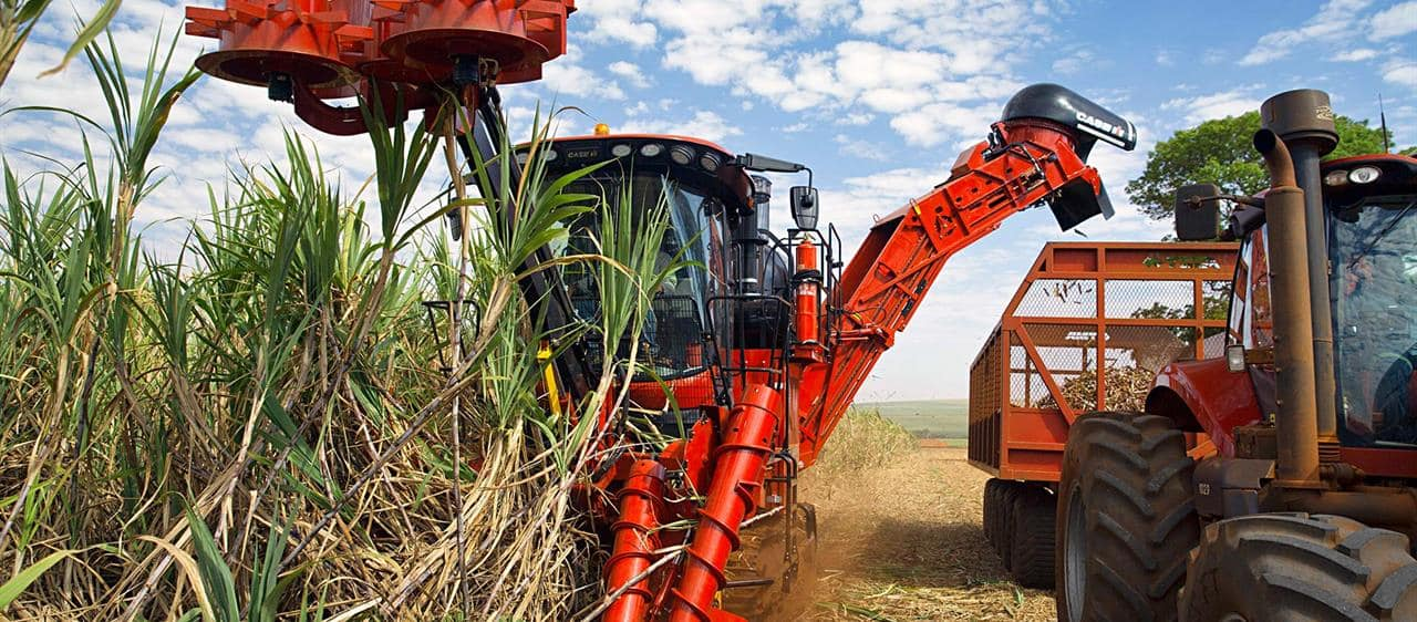 Homegrown ingenuity sees sugarcane harvester power into 75th year