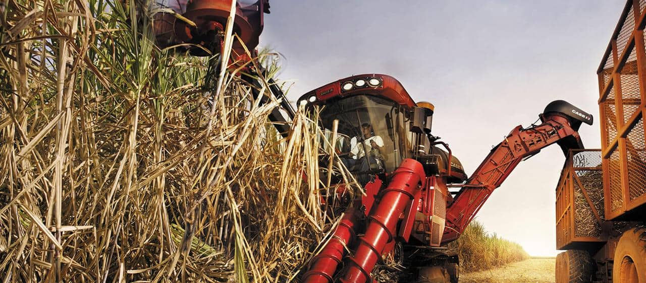 Case IH, a key partner for the South East Asian Sugarcane Industry