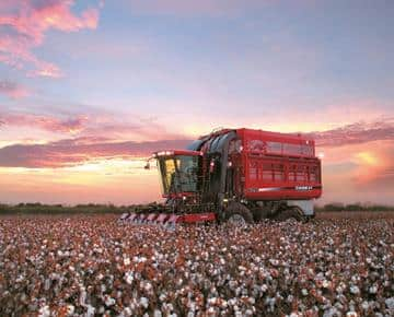 Cotton Express Cotton Pickers