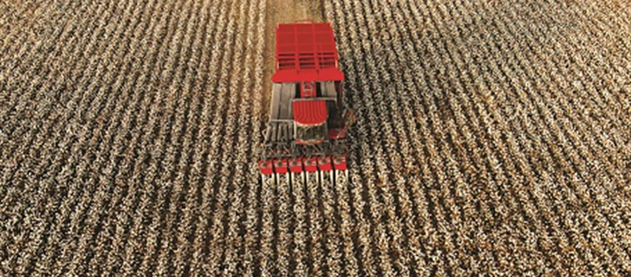 Cotton Express -Maximise picking efficiency