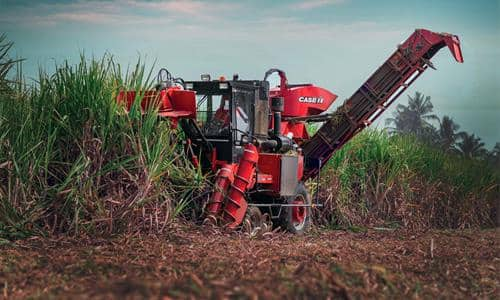 Better cutting quality, improved productivity <br>and longer stool life in the sugarcane field
