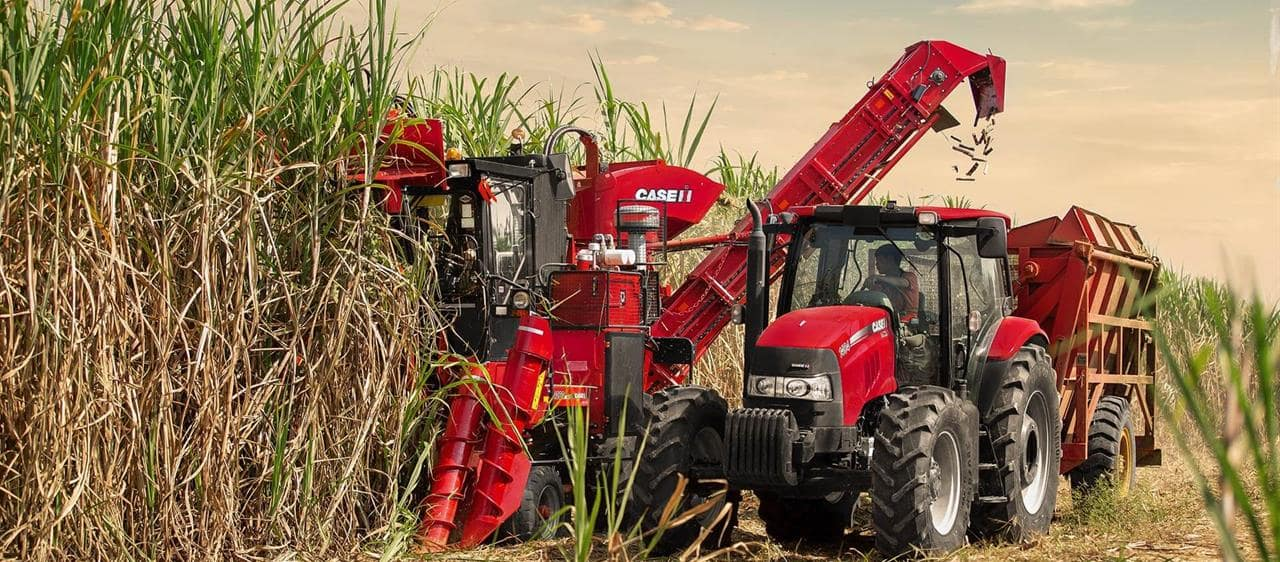 Watch the new Austoft 4000 Series Sugar Cane Harvester in action