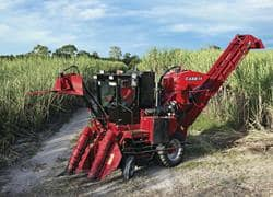 Sugar Cane Harvester Austoft 4000 Case Ih