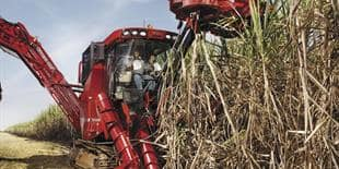 Austoft 8000 sugar cane harvester