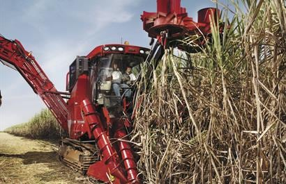 Sugar Cane Harvester 8000 Series-Greater cooling capacity and fewer cleaning stops required
