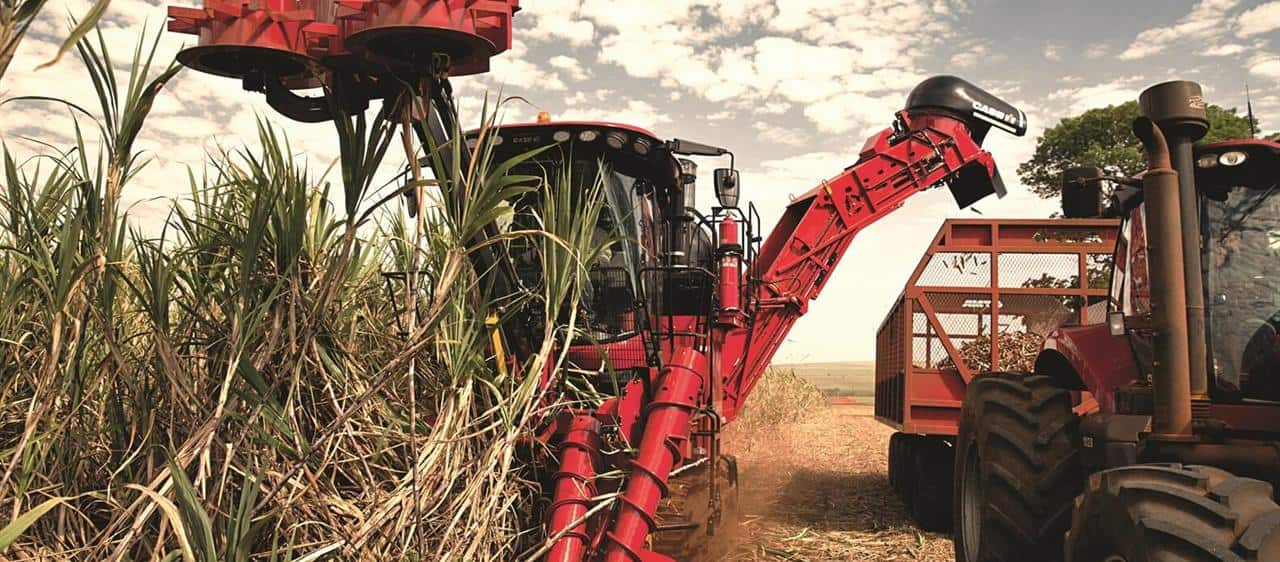 Sugar Cane Harvester Austoft 8010 - Productivity2