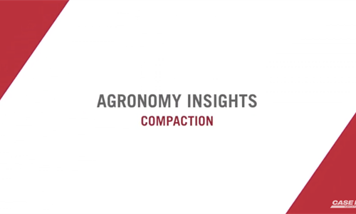 How Compaction Affects Yield
