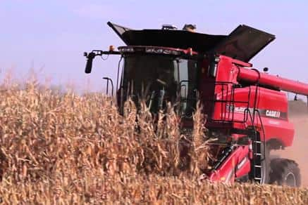 Case IH Axial-Flow Combines: Smart Innovation to Simplify Harvest. Simple, smart, efficient, the proof is in the grain tank.