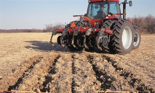 Superior Seedbed Environment