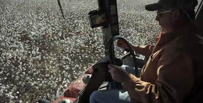 Cotton Picker Yield Monitoring