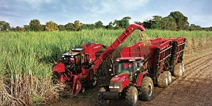 Austoft 4000 sugarcane harvesters