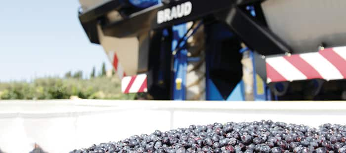 braud-9000l-opti-grape-01a.jpg