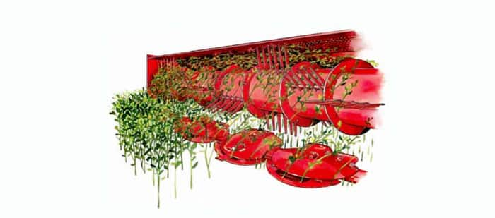 discbine-disc-mower-conditioner-conditioning-rolls-or-flails-04.jpg