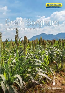 Grain Sorghum - Brochure