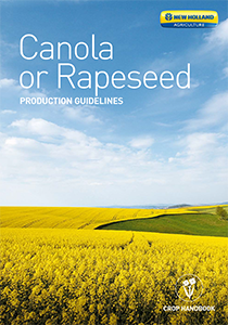 Canola or Rapeseed - Brochure