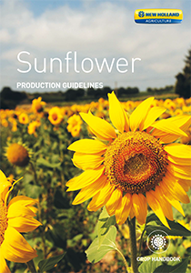 Sunflower -  Brochure