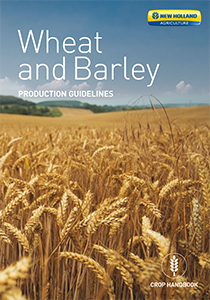 Wheat and Barley -  Brochure