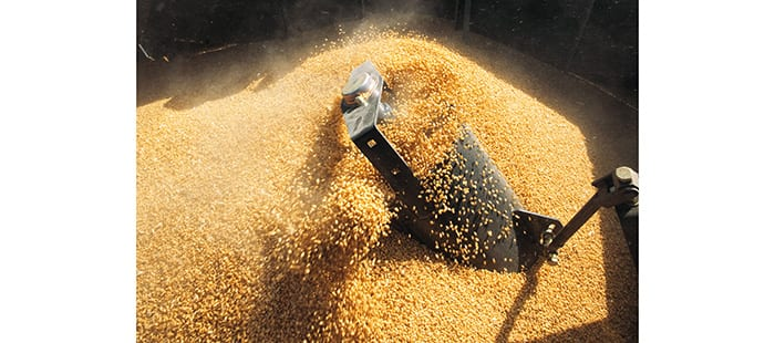 ch-grain-handling-and-storage