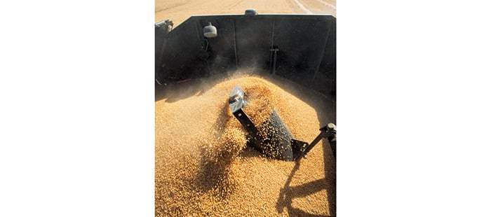 cx5000-cx6000-elevation-grain-handling-and-storage-02a.jpg