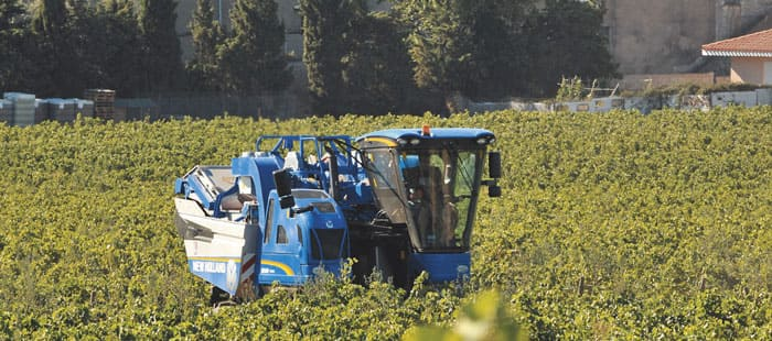 braud-grape-harvesters-more-power-and-efficiency-01.jpg