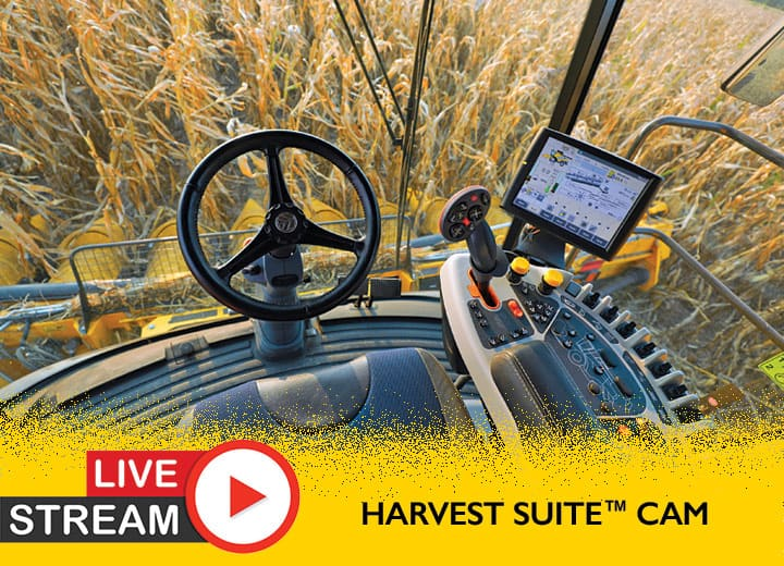 The Corn Harvest Is On—Live!